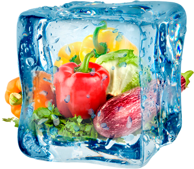 frozen products in ice cube - MRAZIARNE a.s.
